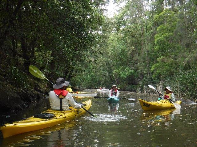 Brimbin Nature Reserve