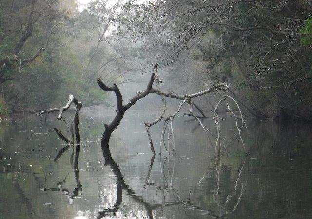 Pipers Creek atKundabung