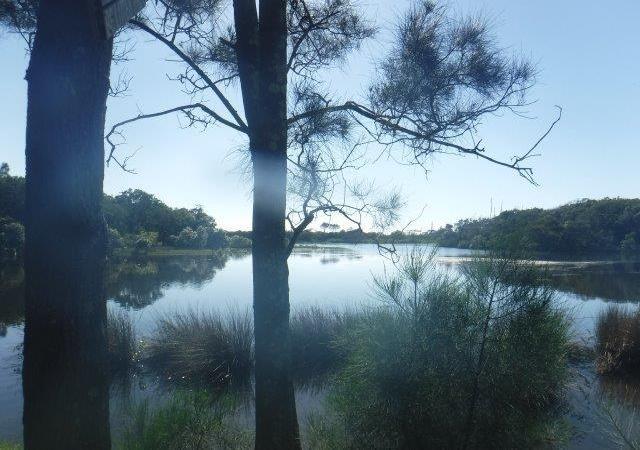 Killick Creek (estuary) at CrescentHead